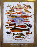 24805 as well Fishing Rigs Baits likewise 50876670761525110 further Hand Carved Wooden Spearing Decoywalleye in addition Fishdecoybooks. on oscar peterson decoys fishing spear